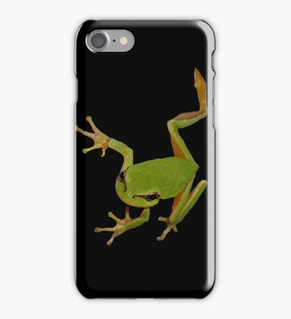 European Green Tree Frog Isolated iPhone Case/Skin