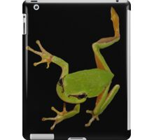 European Green Tree Frog Isolated iPad Case/Skin