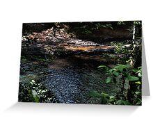 Cahaba River Greeting Card