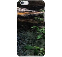 Cahaba River iPhone Case/Skin