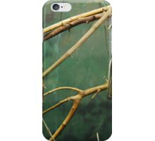 Straw Colored Fruit Bat iPhone Case/Skin