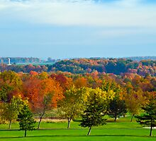 Autumnal splendour and a round of Golf by MarkEmmerson