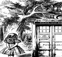 Alice and cat in tardis by JackCustomArt