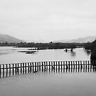 Loch Fleet by lousutherland