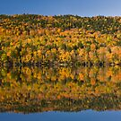 Autumn Reflection by Rob Lodge