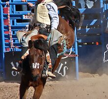 Saddle Bronc Rider by Linda Gregory