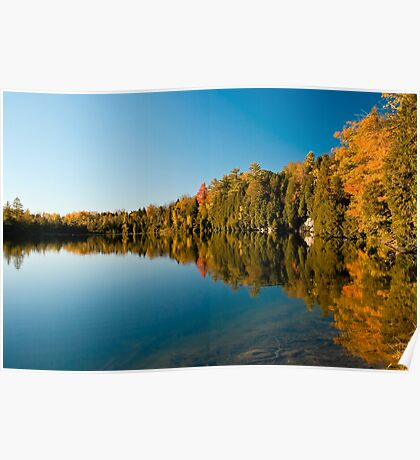 Autumn Colours reflecting on a motionless pond Poster