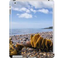 Back Beach 2 - Lyme Regis iPad Case/Skin