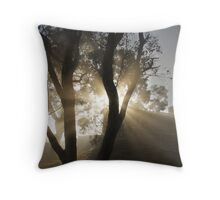 early morning in Eltham Throw Pillow
