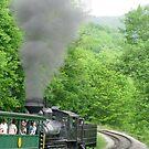 Cass Scenic Railroad by Fern Design