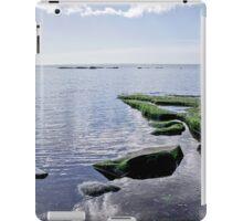 Back Beach 4 - Lyme Regis iPad Case/Skin