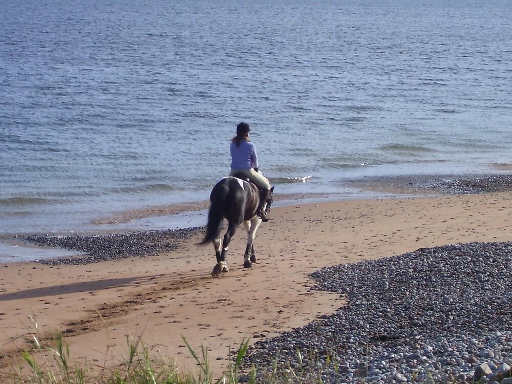 equestrian serenity by gemma angus