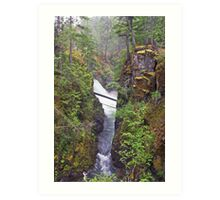 Little Qualicum Falls, Canada Art Print