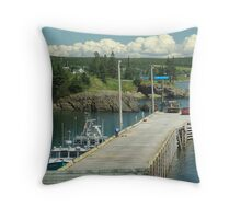 Scott's Bay Throw Pillow