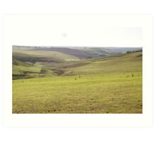 Barrabool Farmland Art Print