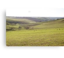 Barrabool Farmland Canvas Print