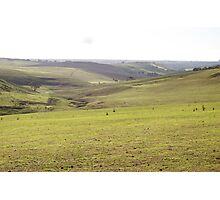 Barrabool Farmland Photographic Print