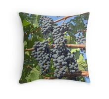 Napa Valley grapes Throw Pillow