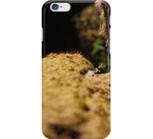 Twelve parts of a Tree (10) iPhone Case/Skin