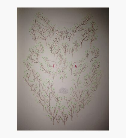 Nature Wolf  Photographic Print