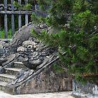 Dragon Stone Stairs - Hue, Vietnam. by Tiffany Lenoir