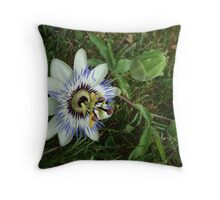 In love with Passion. Throw Pillow