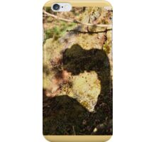 Twelve parts of a Tree (11) iPhone Case/Skin