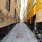 Stockholm. A Narrow Street in Gamla Stan by Igor Shrayer