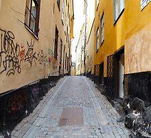 Stockholm. A Narrow Street in Gamla Stan by Igor Shrayer