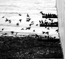 take flight  by LavenderGhosts