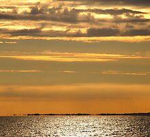 Golden sunset over the ocean by Julie Haydon
