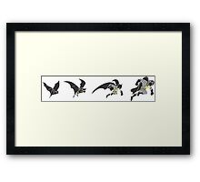 Evolution of the Bat Framed Print