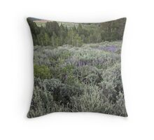 Surprise Valley, California Throw Pillow