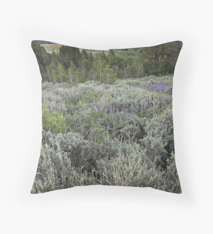 Surprise Valley, California Throw Pillow
