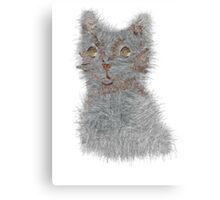 fluff ball Canvas Print
