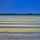 Low Tide by Peter Daalder