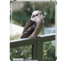 A kookaburra at rest iPad Case/Skin
