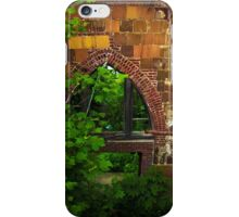 In,Or Out?  iPhone Case/Skin