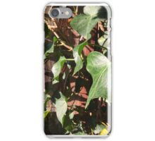 Shinging Vine Leaves iPhone Case/Skin