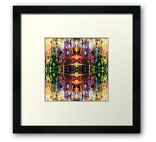 Abstract D C Framed Print