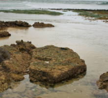 Rocks at Wonoona Beach Sticker
