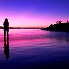 Purple Sunset by Kate Wall