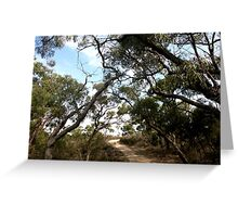 The Path To Serenity Greeting Card