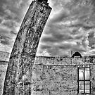 Mount Stromlo Ruins by Mark Moskvitch
