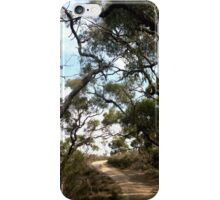 The Path To Serenity iPhone Case/Skin