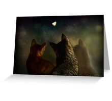Bella Notte Greeting Card