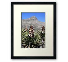 Red Rock Desert Flowers#2 Framed Print