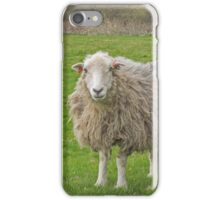 Curious ewe with her lamb iPhone Case/Skin