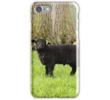 A black Herdwick lamb iPhone Case/Skin