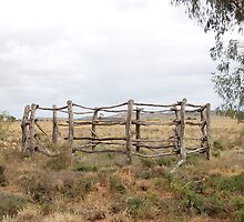 'The Old Corral' by Ian Berry